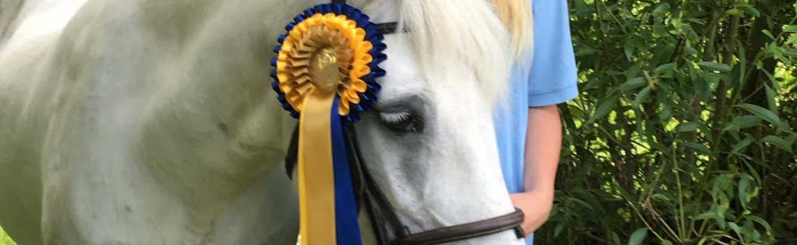 Win Rosettes & Prize Money