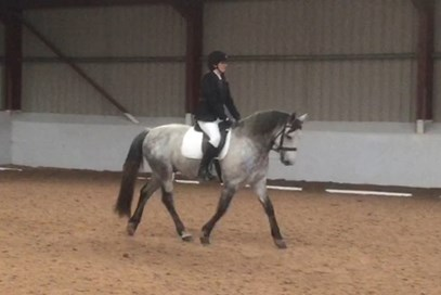 2nd Celia Dawson - Clooneen Ciaran (UK) - April 2017 Class 22 Dressage Divas