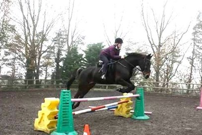 2nd Siobhan Dallaway - Oak View Shadow (UK) - May 2017 Class 4 Jumping Stars.