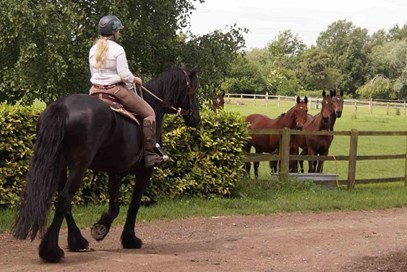=10th Helen Watts - Sybrich Van Coudenburgh (UK) -  June 2017 Class 2 Best Friends