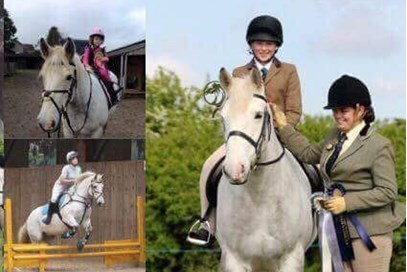 1st Sophie McCabe - Dylan(UK) - July 2017 Class 8 Family Horse or Pony