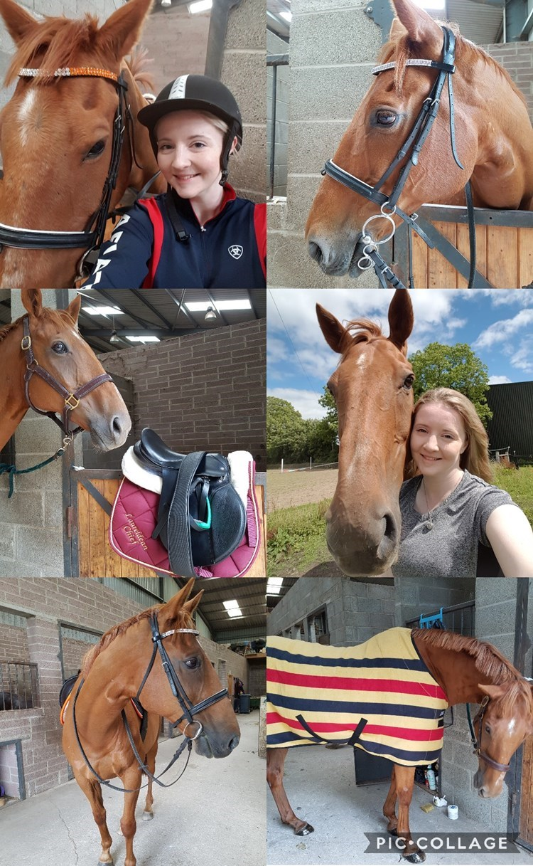 2nd Sarah O'Flaherty - Laureldean Chief(UK) - August 2017 Class 1 Summer Fun.
