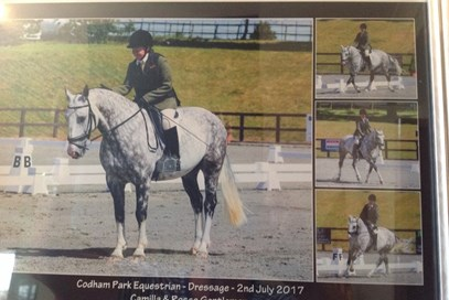9th Camilla Jarvis - Rosco Gentleman(UK) - September 2017 Class 10 Club 50.