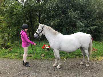 6th Grace Arnold - Chunky(UK) - September 2017 Class 11 Horse or Pony Native to British Isles.