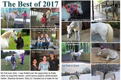4th Kris Bryant - Glory(USA) - December 2017 Class 2 The Very Best of 2017
